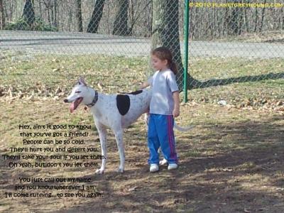 planetgreyhoundfriend