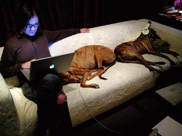 reznorandhounds2